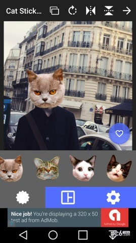 猫头贴纸app下载
