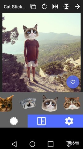猫头贴纸app