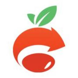 ASP.NET Video Portal5.2 正式版
