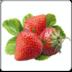 中国草莓网 1.0