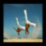 Capoeira Lessons 1.0