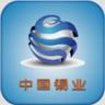 中国锡业 16.0