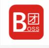 Boss团安卓版