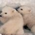 北极熊拼图 1.1