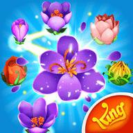 花朵传奇免费中文版