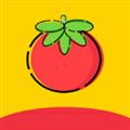 番茄视频免升