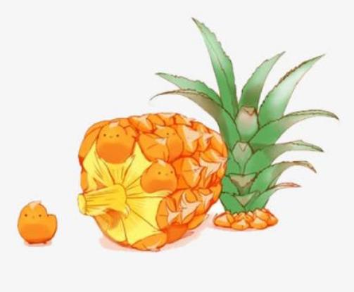 菠萝蜜钱贷款