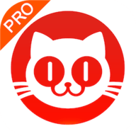 猫眼票房分析专业版 3.6.1 安卓版