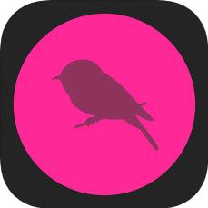 TaoMix V1.1.20 苹果版