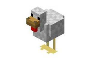 如何养殖小鸡?我的世界手游小鸡繁殖方法介绍