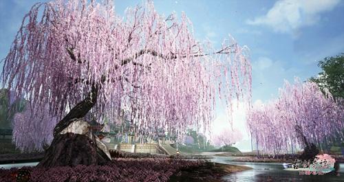图005流花宫外的粉树.jpg