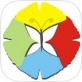 今日丹东app