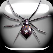 蜘蛛恶作剧简版 1.0