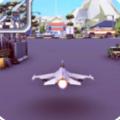 遥控飞机飞行